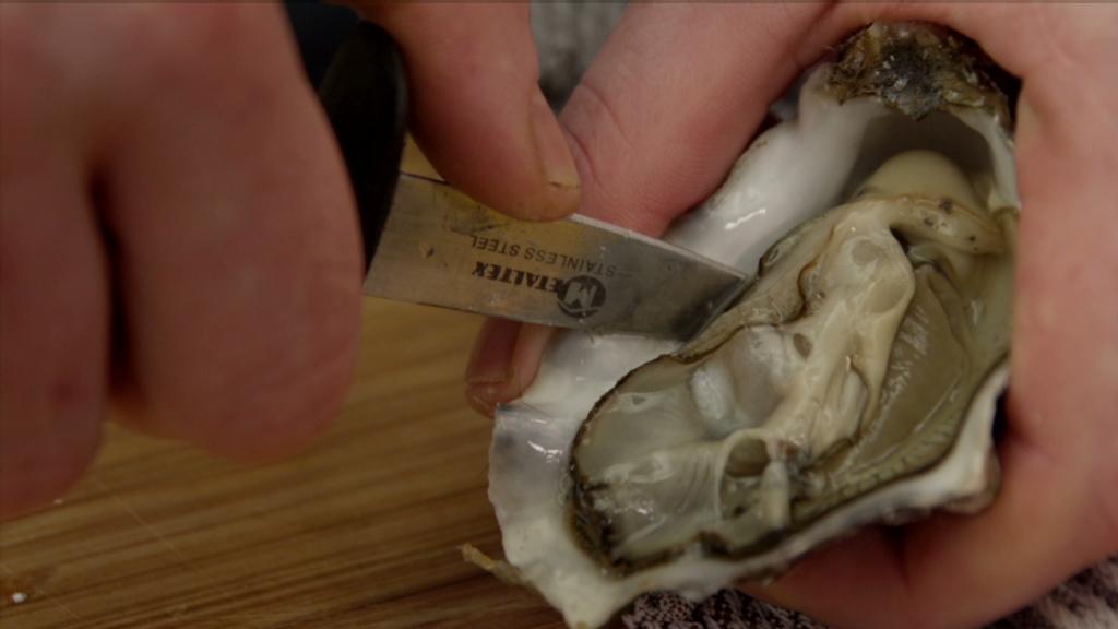 platte oesters openen